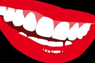 Employee Benefits – Company Dental Insurance