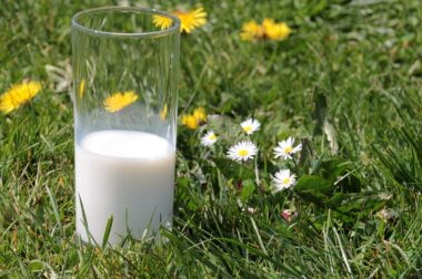 Raise a Glass for the 17th Annual World Milk Day
