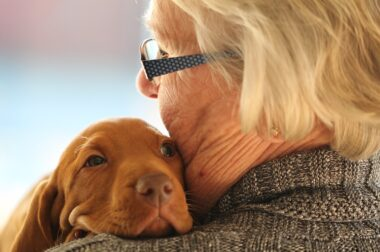 Why having a pet is good for your health