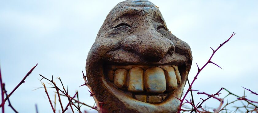 Smile; you have private dental insurance